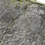 Pieghe nella Formazione di Livinallongo (Triassico -Ladinico-)