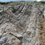 Particolare della piega della foto precedente (Formazione di Moena, Triassico)