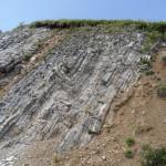 Formazione di Moena (Triassico)